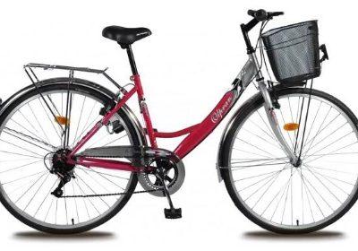 Cyklistická sezóna